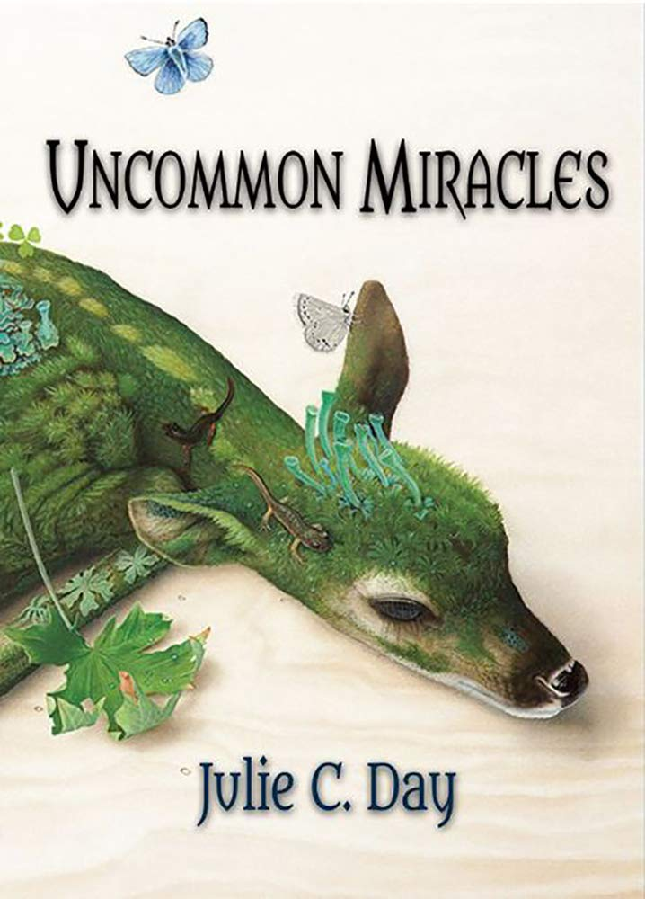 Uncommon Miracles by Julie C. Day